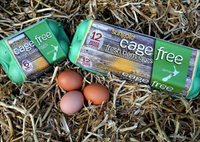 Sungold Cage Free
